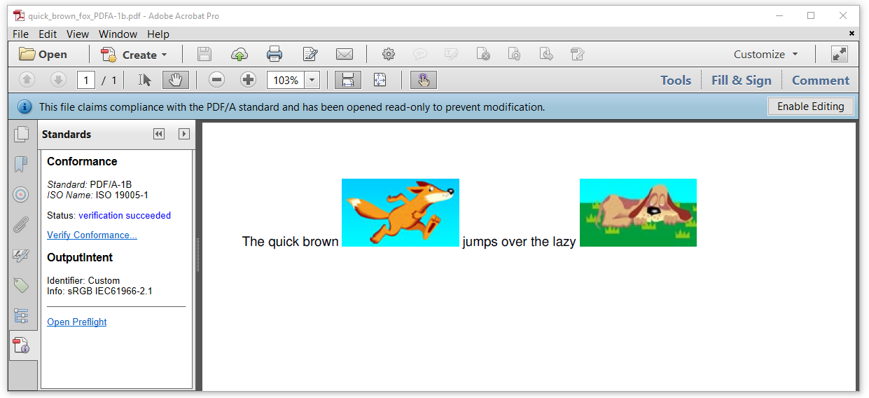 Figure 7.2: a PDF/A-1 level B document