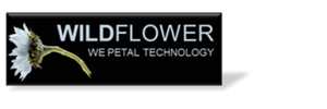 Wildflower International Ltd.