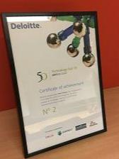 Deloitte Fast 50 2015